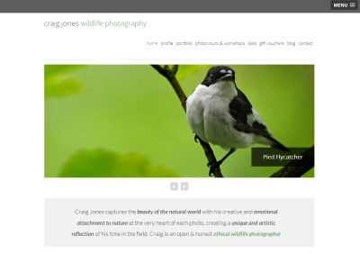 an example of the images created by Craig Jones