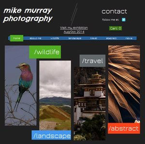 an example of the images created by Michael Murray